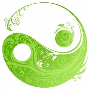La Armonía del Hogar, el poder del Feng Shui