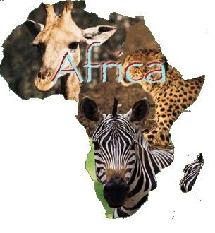 Maravillas por descubrir…Expediciones a África