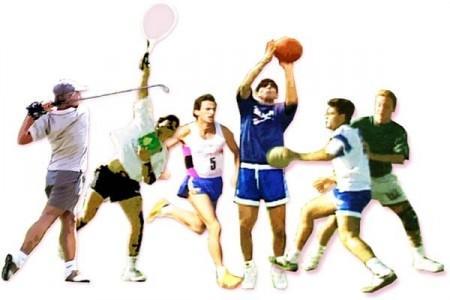 Distribución marcas deportivas