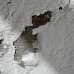 Cómo acabar con las manchas de humedad en las paredes