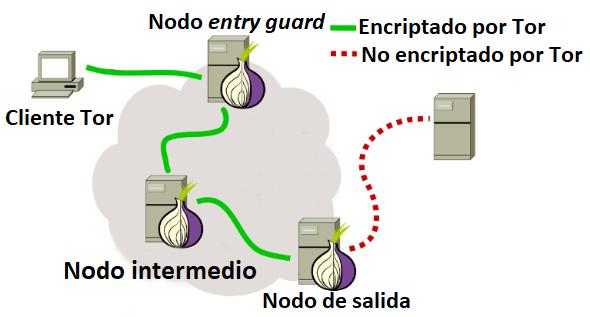 que-es-tor-protege-tu-privacidad-internet