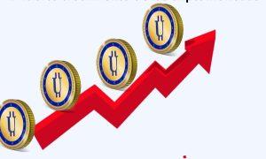 El creciente uso de las criptomonedas