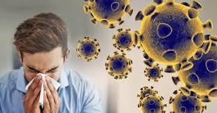 Herbolario vs coronavirus