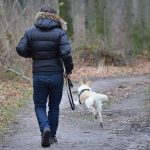 Que-ocurre-si-no-saco-a-pasear-mi-perro